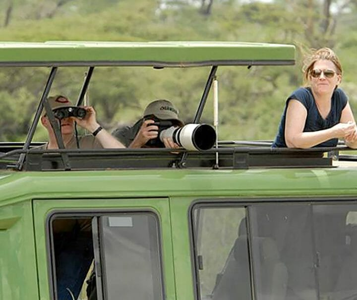 game drive in tanzania, safaris in serengeti national park