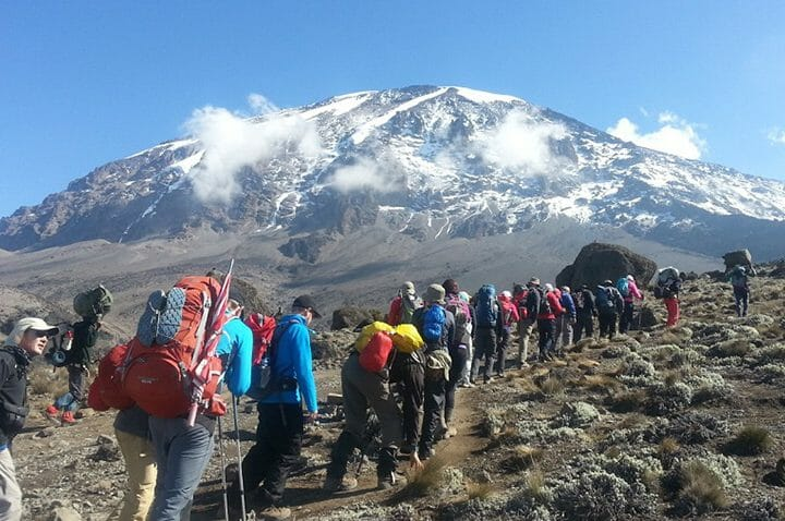 tourist climbing mount Kilimanjaro