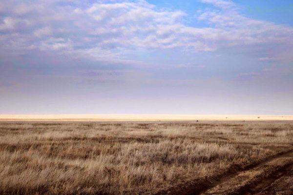 Serengeti Namiri Plain