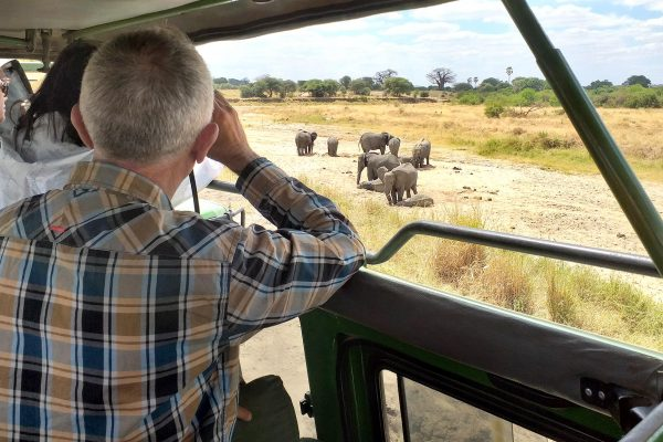 Stemma-Safaris-Tarangire-National-Park
