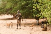 Hadzabe hunting